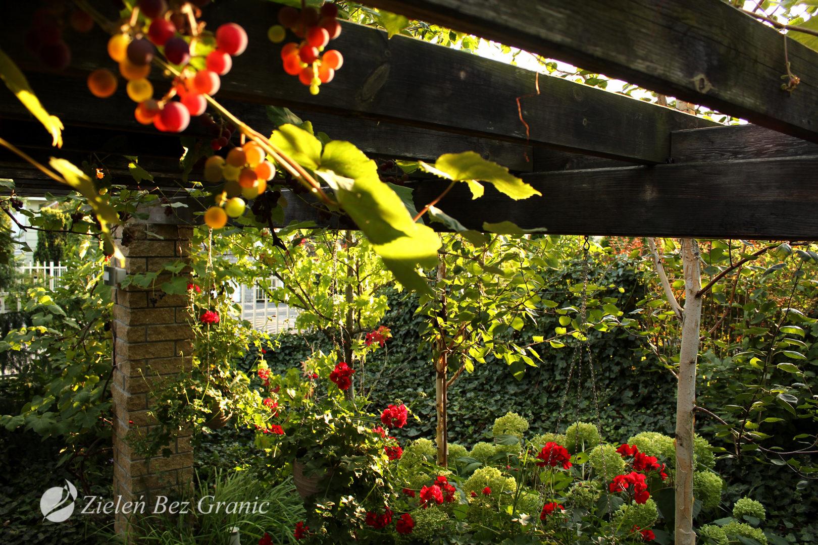 Aranżacja ogrodu w stylu klasycznym.