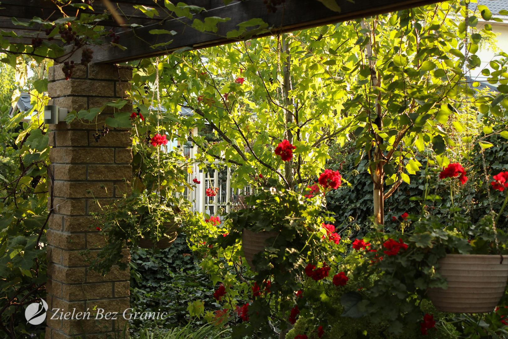 Przytulny ogród przydomowy.