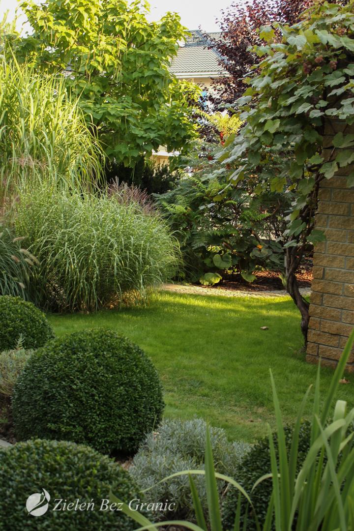 Przydomowy ogród jako oaza zieleni.