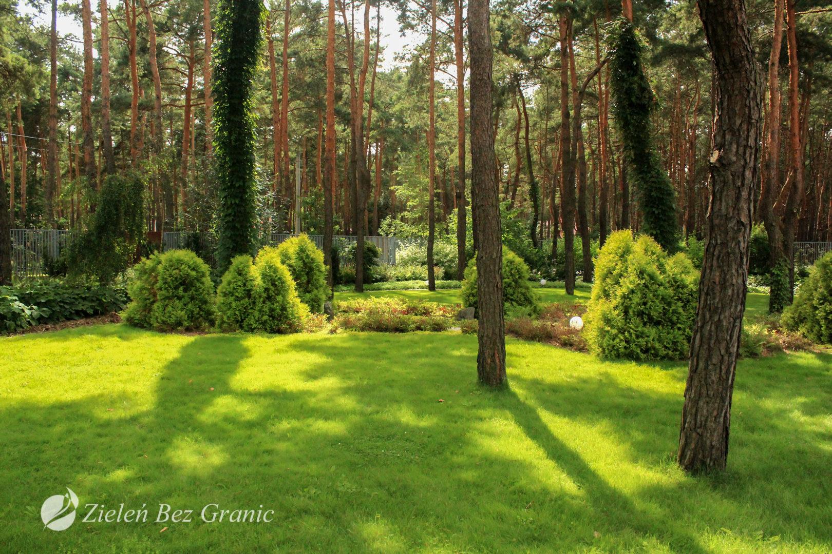 Ogród leśny wpisany w otoczenie.