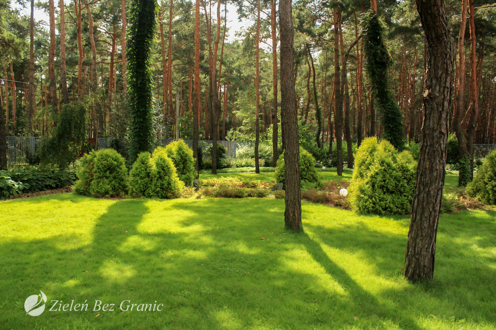 Forest Garden in Józefów