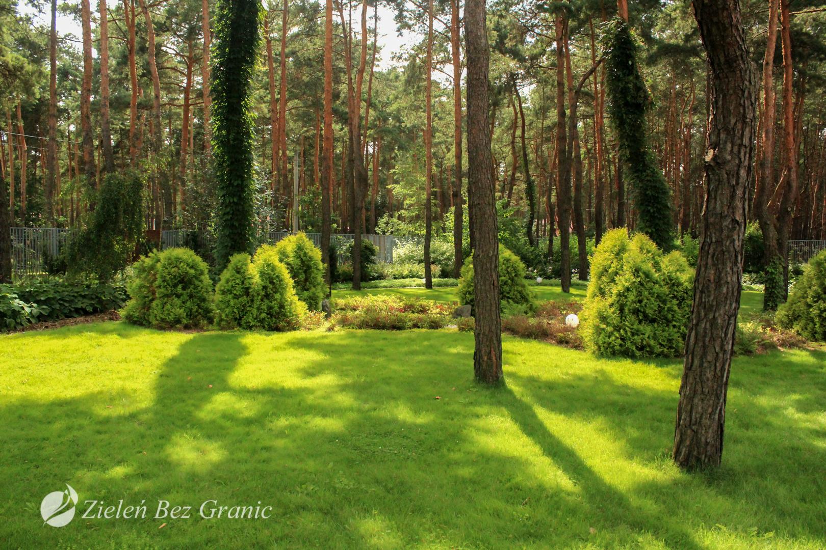 Forest Garden in Józefów