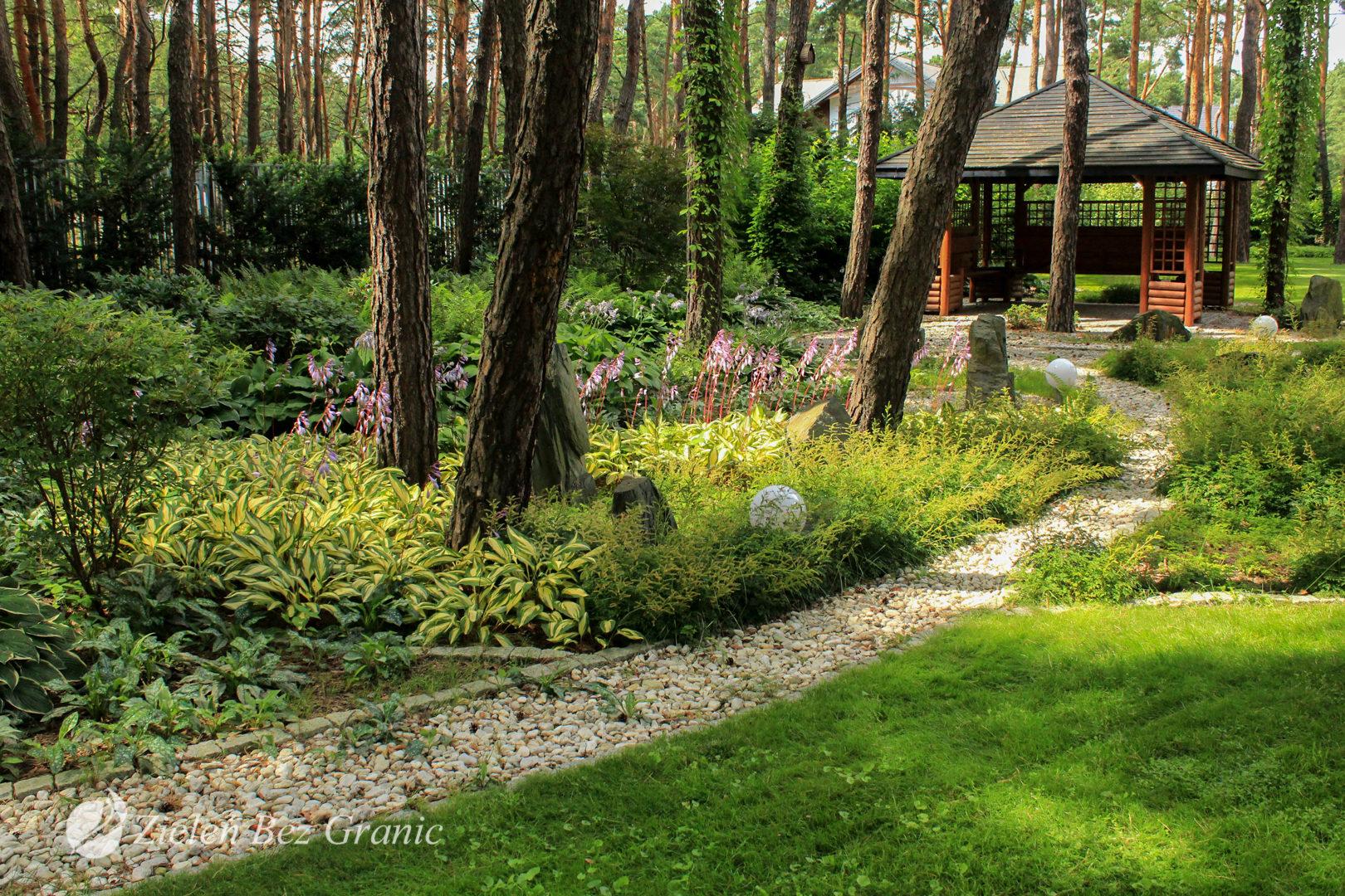 Dobór roślinny o charakterze leśnym.