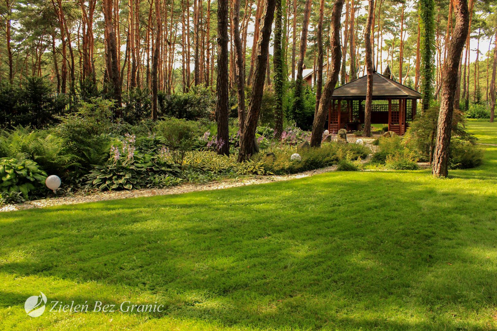 Duża powierzchnia trawnika.