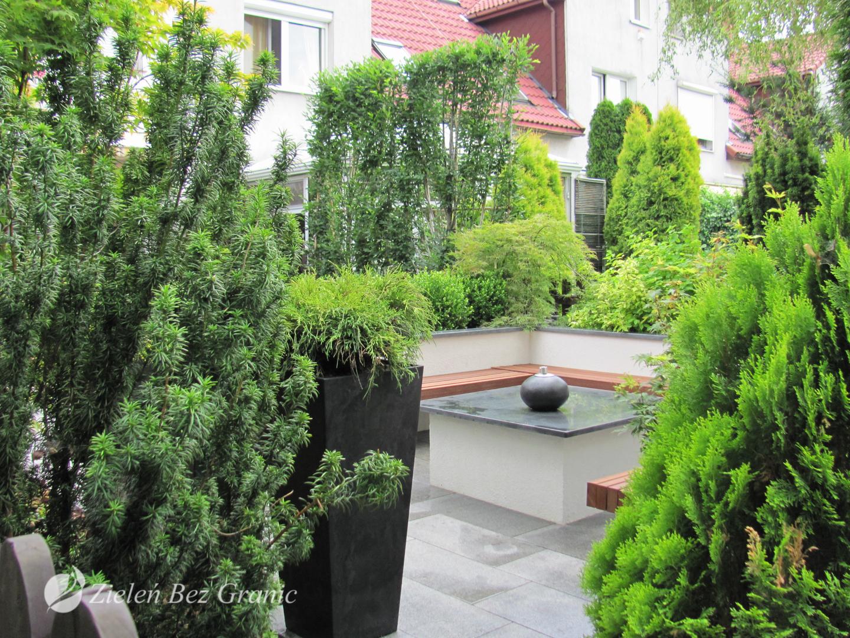 Pomysł na miejski ogród w nowoczesnym stylu.