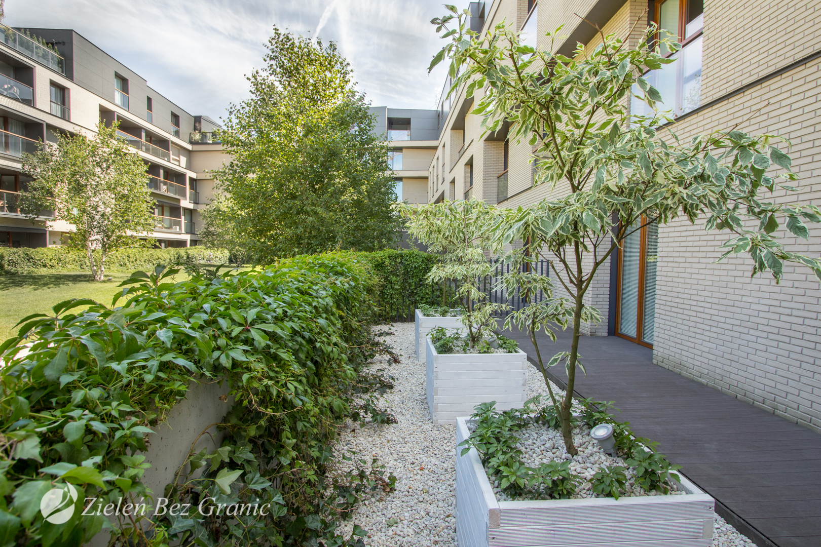 Urban garden | Wilanów