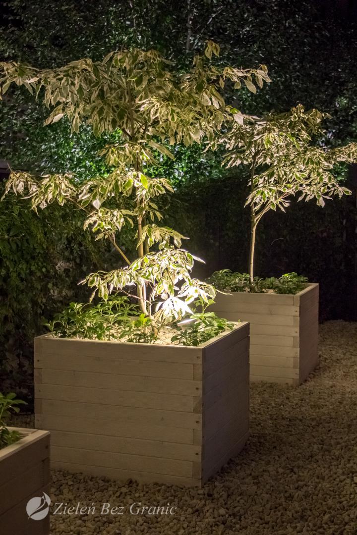 Aranżacja ogrodu miejskiego.