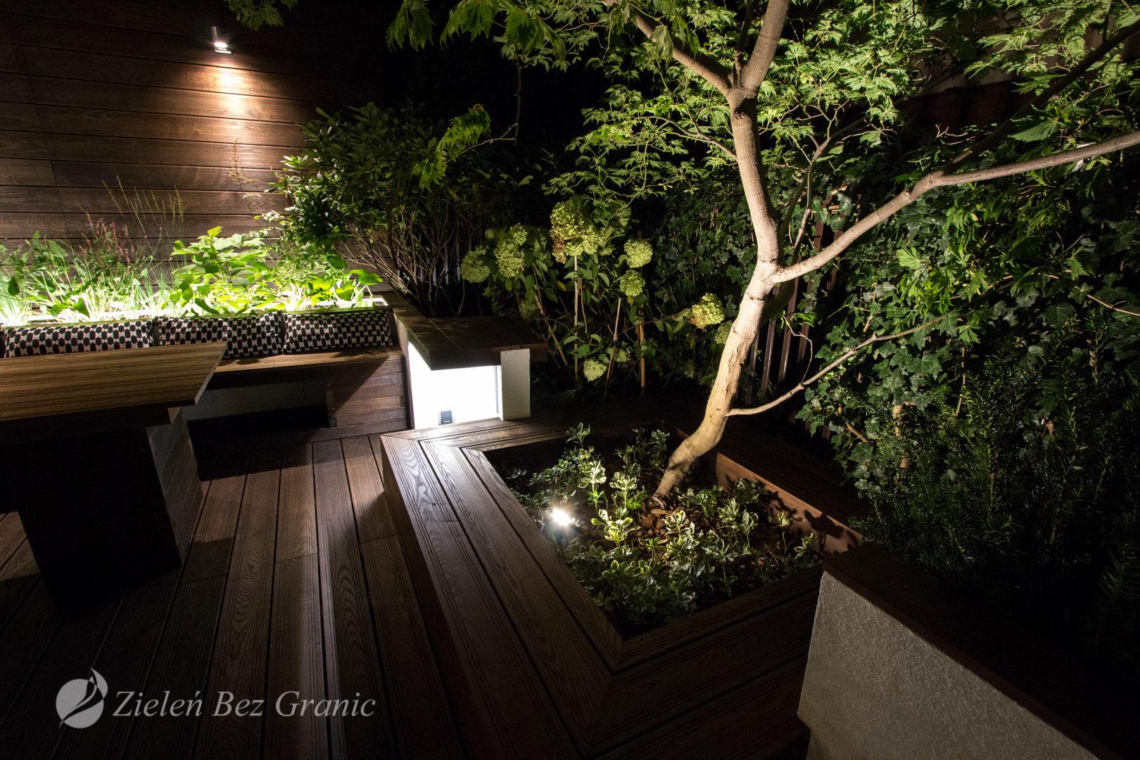 Reflektory podświetlające drzewo w donicy.