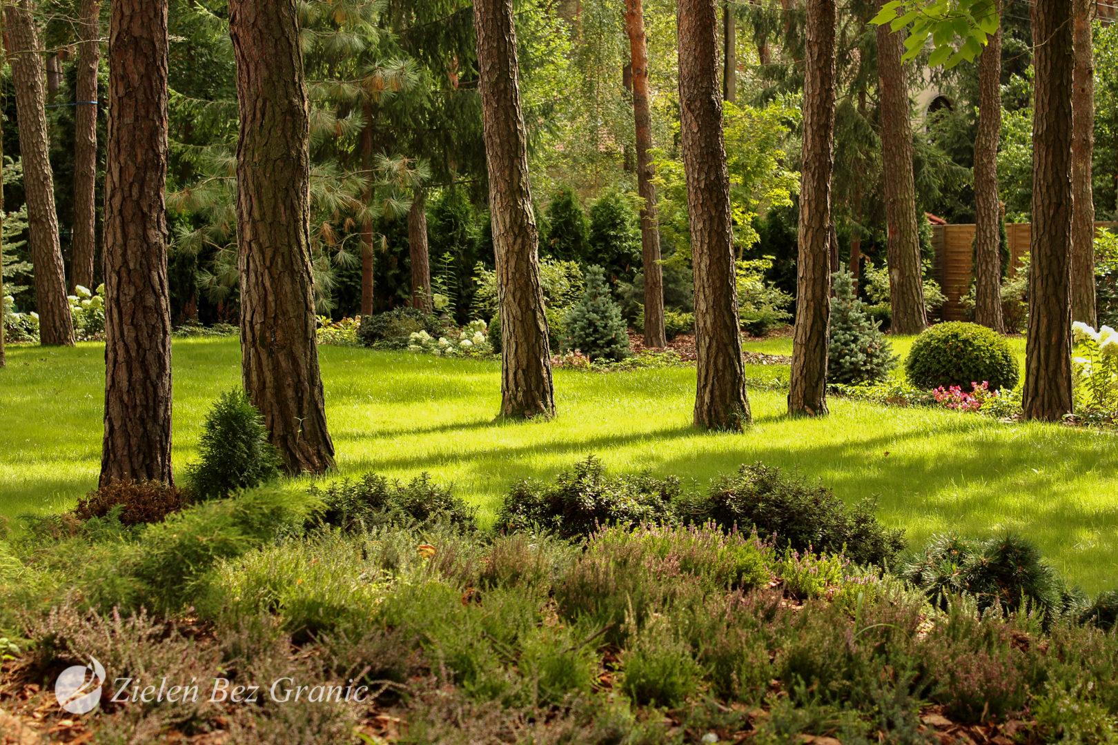 Strefa wypoczynkowa w dalszej części ogrodu.