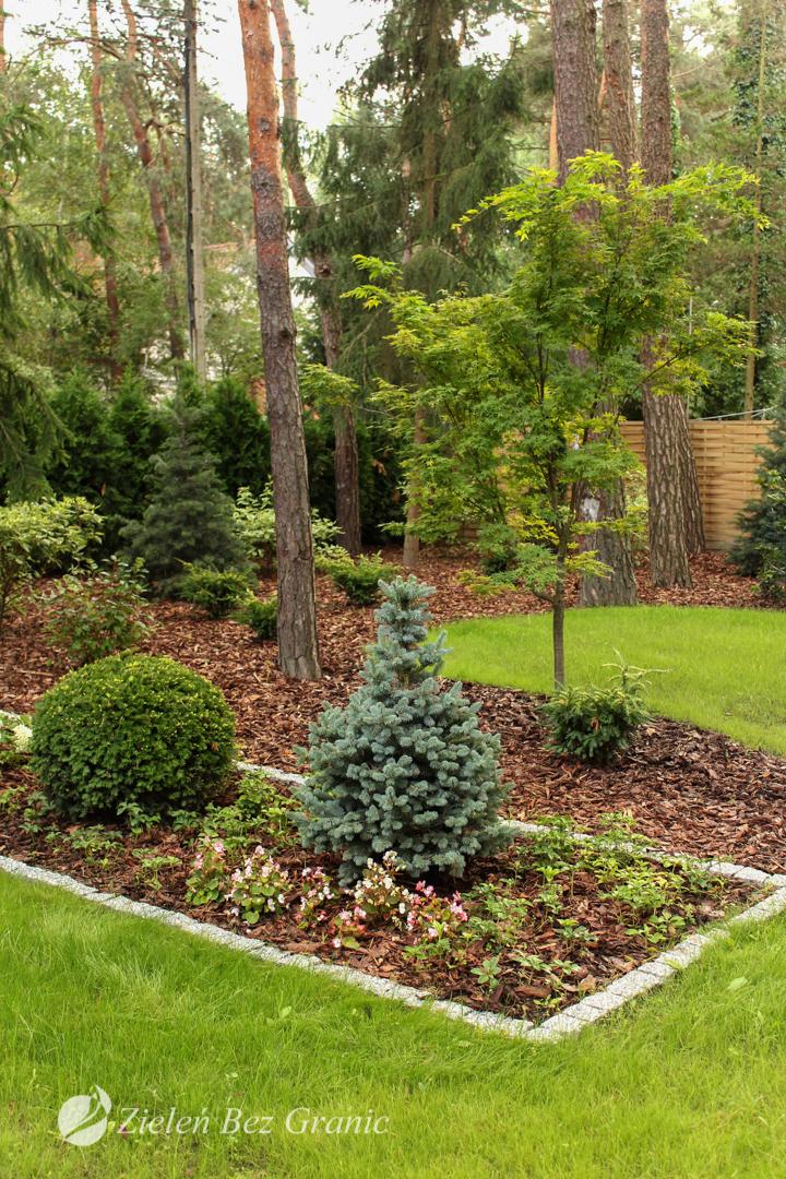Ogród położony w lesie.