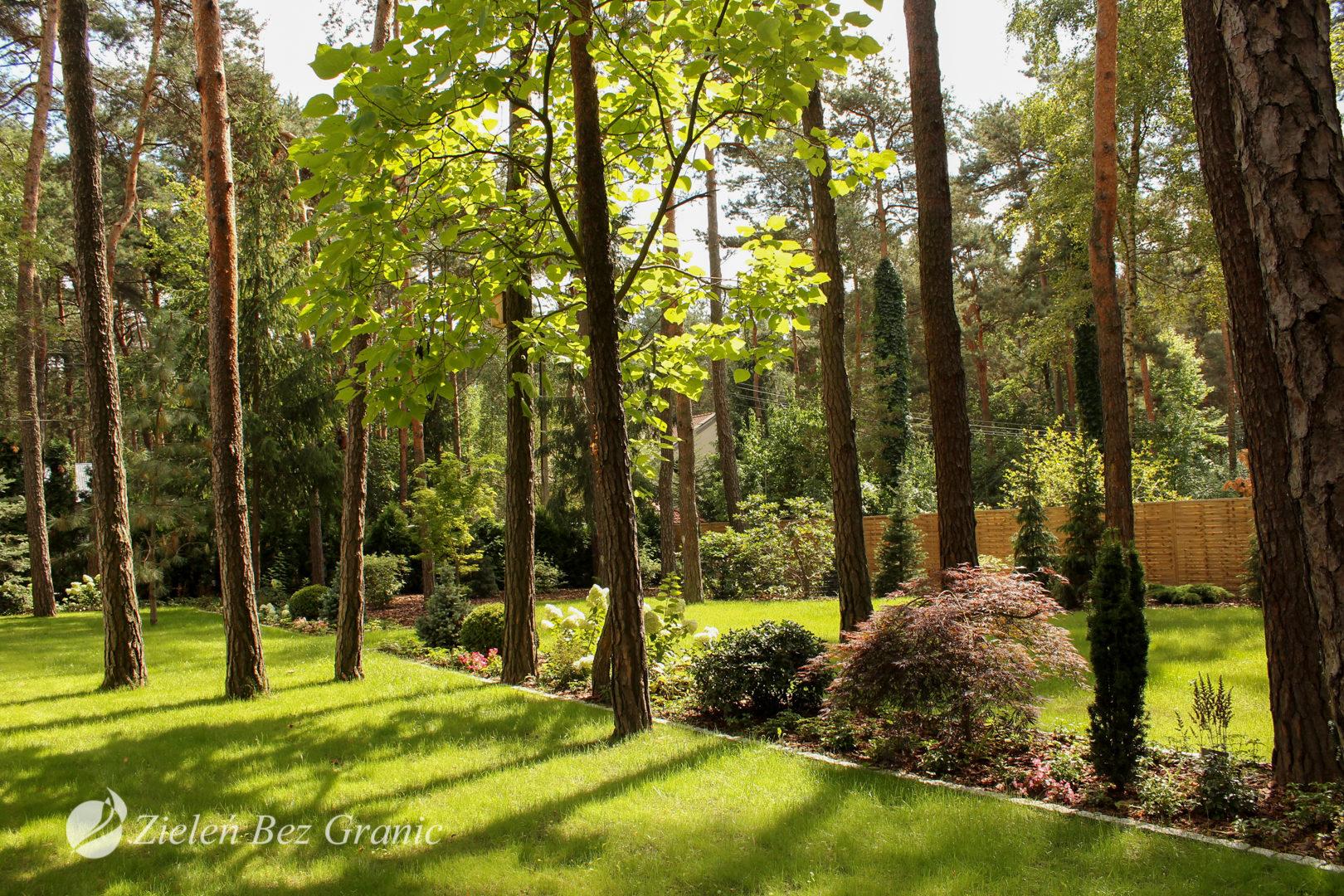 Projekt zaaranżowany w okół istniejących drzew.