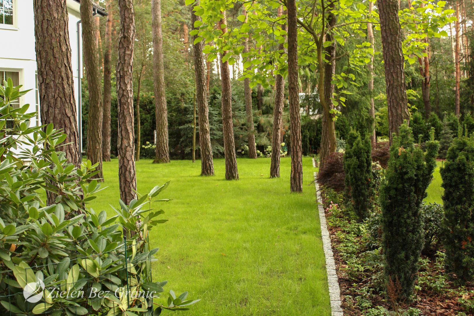Duża powierzchnia trawnika do rekreacji.