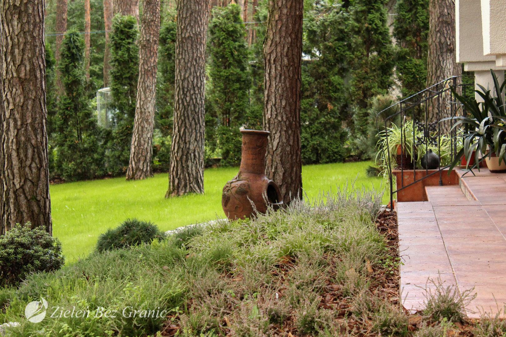 Przydomowy ogród o charakterze leśnym.