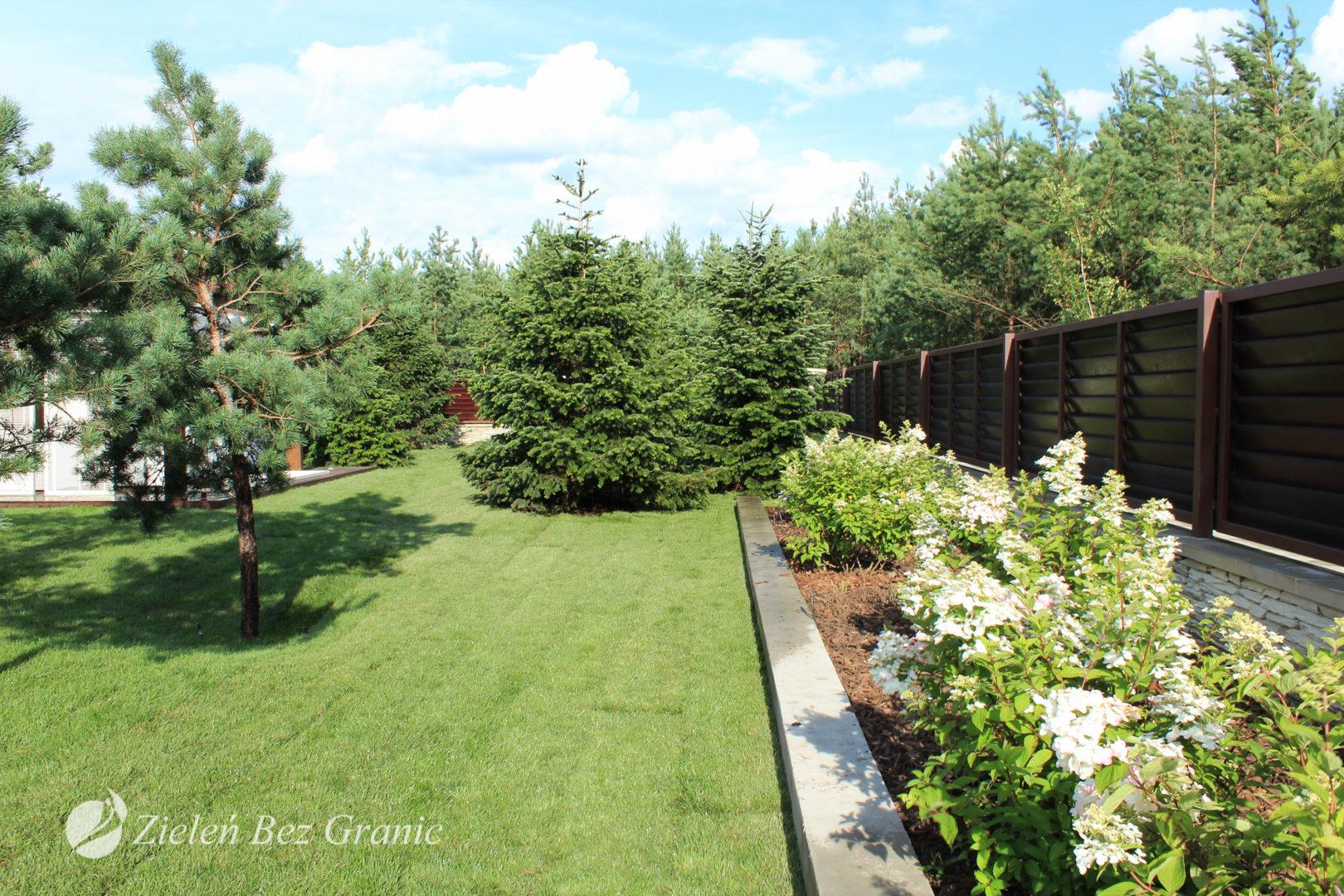 Zastosowana roślinność jest bardzo minimalistyczna.