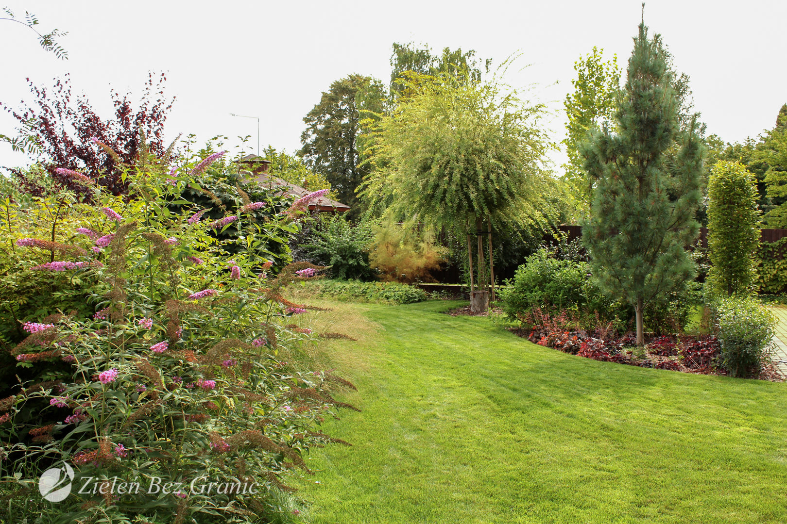 Pomysł na tradycyjny ogród przydomowy.