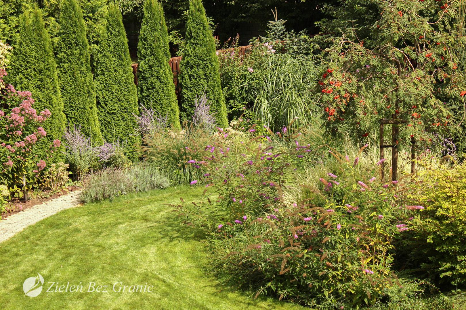 Ogród zatopiony w zieleni.