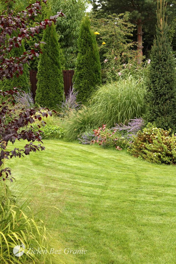 Otwarta przestrzeń trawnika.