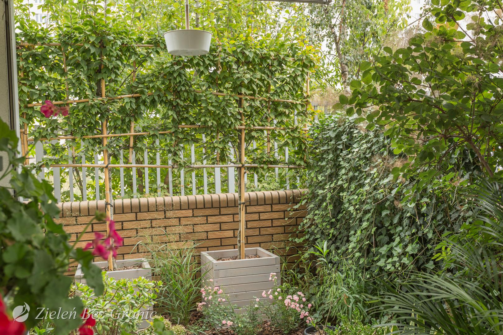 Ogródek przydomowy na parterze
