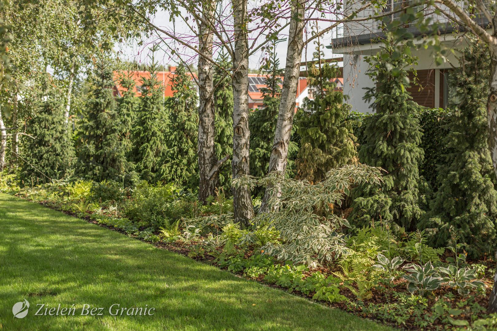 Przydomowy ogród leśny